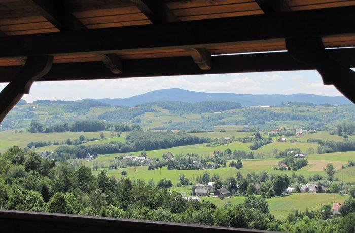 Widok z altany